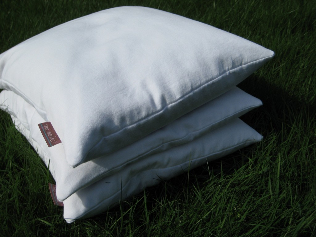 travel pillows, twilight pillows, buckwheat hull pillows, foam pillows