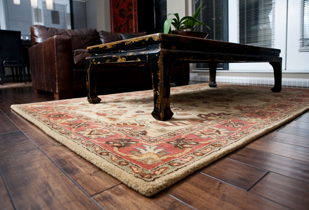 decorative area rugs, nourison area rugs, custom area rugs, animal print area rugs