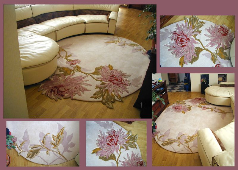 area rugs seashell news, cheap area rugs, kid area rug, modern area rugs
